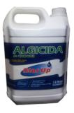 ALGICIDA CHOQUE 5LT CLOR UP